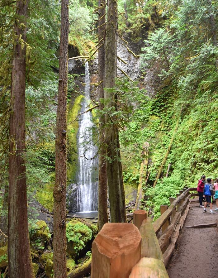 Niższy punkt widokowy na wodospad Marymere Falls w Olympic National Park